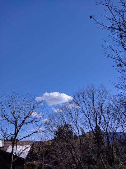 仲本律子 陶芸作家 ブログ 女性陶芸家 茨城県笠間市  雪が降った日 青空