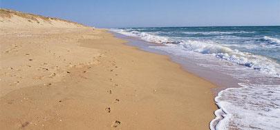 l'ocean, la plage, la mer