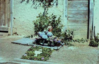 Fronleichnam 1966: kleiner Privat-Altar am Strassenrand. (Foto: Anton Brogli, Vidalen)