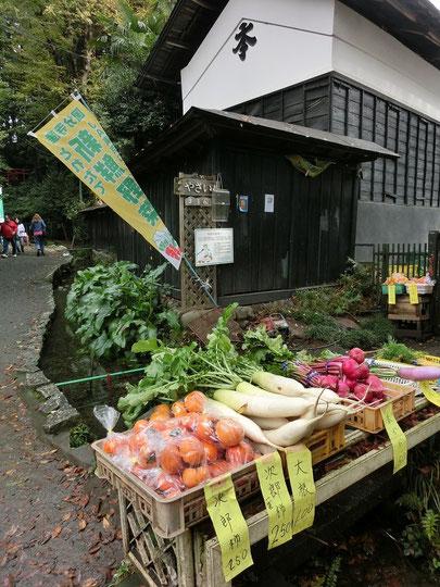 11月7日(2014) 新鮮野菜の直売所:お鷹の道(国分寺市)で11月2日に撮影