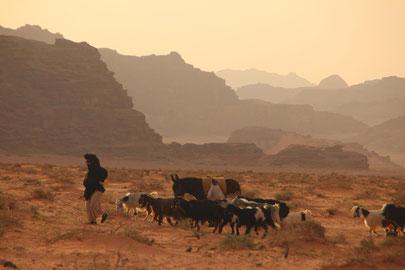 Dir könnten auch Bilder aus der Wüste Jordaniens gefallen.