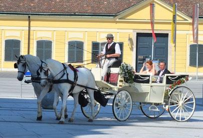 Kutsche für Hochzeit