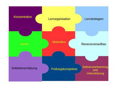 Lernerfolgspuzzle als Grundlage für ein erfolgreiches Lerncoaching.