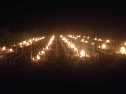 gel chablis bougies