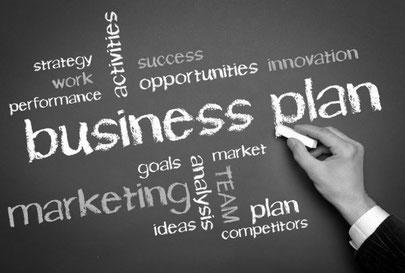 businessplan for IND permit