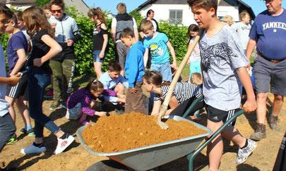 Blumenwiese Schulgelände Leonberg