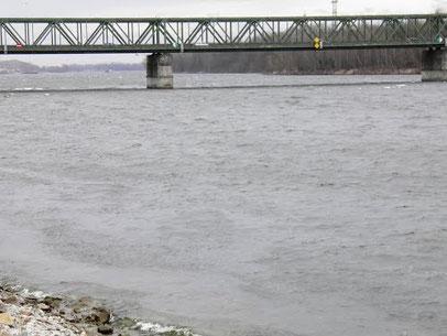 Hochwasserbericht für die Donau OÖ mit Pegel Prognosen
