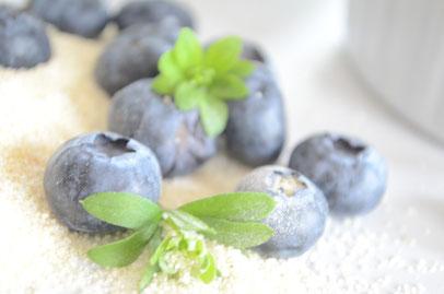 Der gute alte Grießpudding mit Blaubeeren nach Omas Rezept - Sternschnuppe home & garden, Eichelhardt