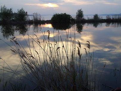 Plattensee, Ungarn, Badacsony