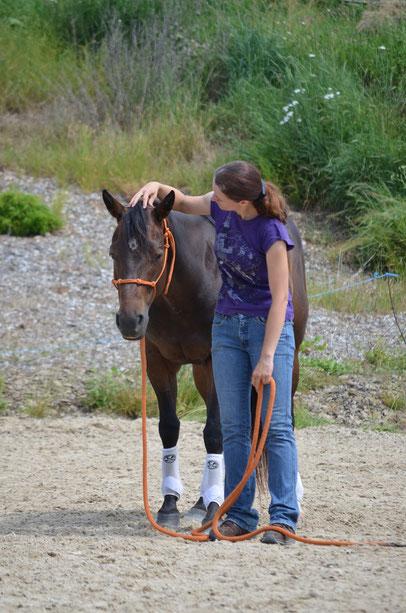 """Sabrina und Peppy im """"Kopf senken"""" -Nachgeben auf sanften Druck im Genick. Hierbei gilt : < 100 gr Druck! Ist es mehr so ist leider kein Mitdenken des Pferdes gegeben."""