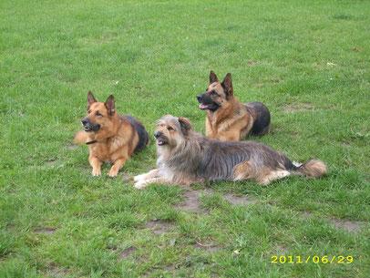 --Ralf mit seinen Deerns--