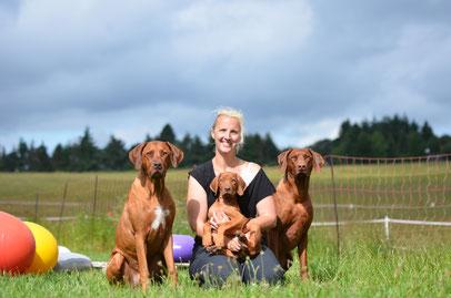 Hundeschule, Hundetraining, Ernährungsberatung, World of Dogs, Butzbach, Ridgeback