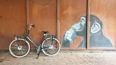 BATAVUS Diva Plus Affe Graffiti Wand Hannover Fahrradcafé