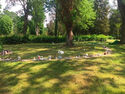 Sternenkinderfeld - Altstädter Friedhof Salzwedel