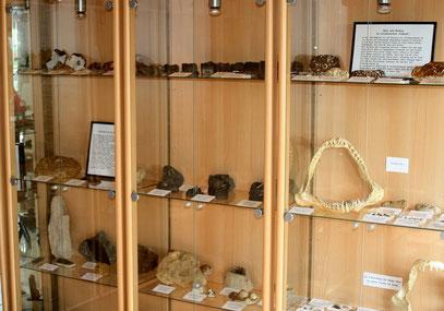 Unser Verkaufs- und Ausstellungsraum