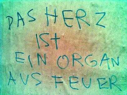 DIE WAHRHEIT ÜBER DAS WAHRHEITSORGAN (c) 2.7.2011 (Unknown Artist)