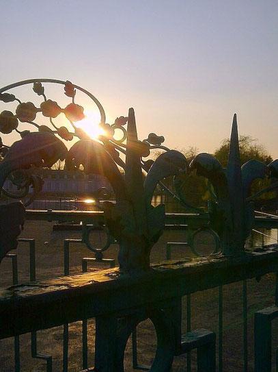 DURCH DIE BLUME (c) De Toys, 23.3.2012 @ Schloß Benrath (Benrather Schloßallee)