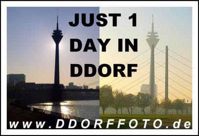 JUST 1 DAY (c) De Toys, 9.11.2011 @ D'dorf von Oberkassel bis zum Medienhafen