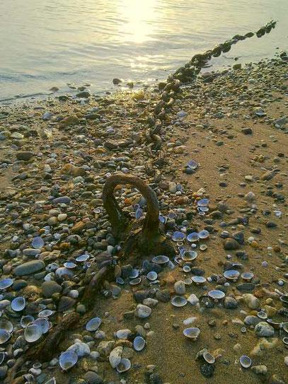 DAS ROSTLOCH ZUR ANDEREN SEITE (c) De Toys, 1.5.2012 @ Hammer Karibik (Ddorf)