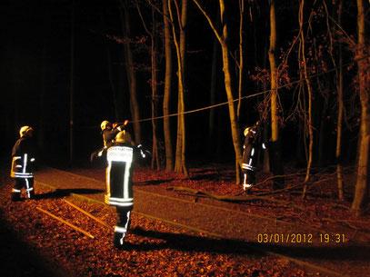 Leitung hing über die Fahrbahn und dem Radweg,         Foto: FFW Vogelsgrün