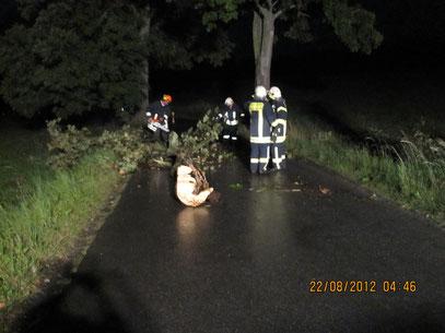 Sturmschaden zwischen Schnarrtanne und Wernesgrün ,       Foto: FFW Vogelsgrün