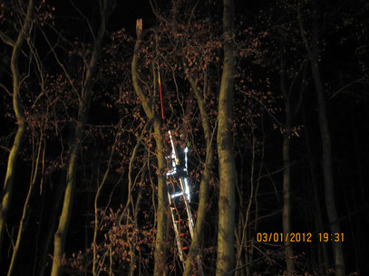durch einen starken Ast wurde eine Telefonleitung heruntergerissen ,   Foto: FFW Vogelsgrün