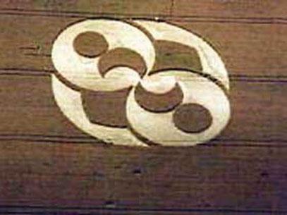 Der 1996 in England entdeckte Kornkreis