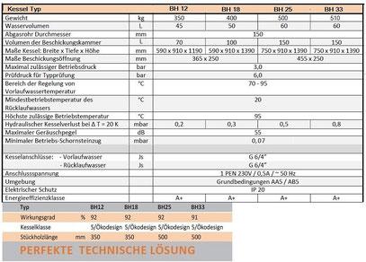 Technische Parameter BH Holzvergaserkessel