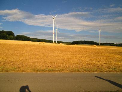 Windpark.