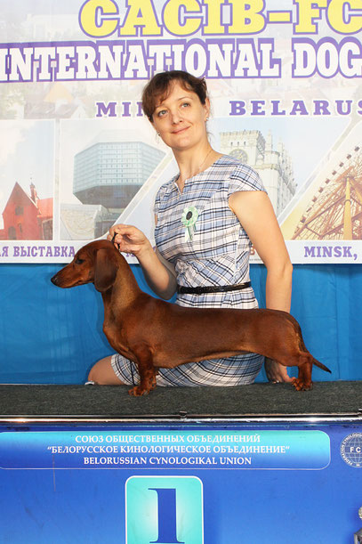 Almaznyi Laretz AVE MARIA - BOB junior, 2-nd CRUFTS Qualification, BOB, BIS Jun-5, BIG - II