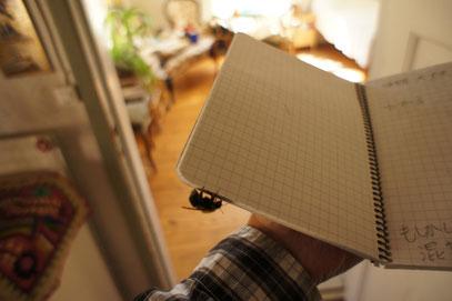 またやってきた。 ほんとにおいらのノートが好きだね~。やはり人徳のなせる業か。