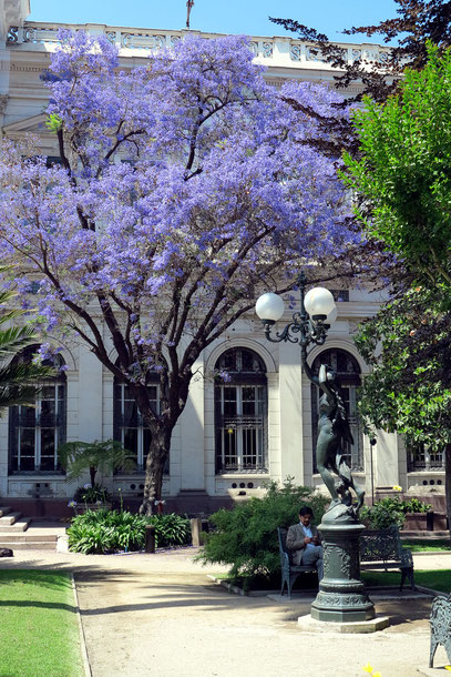 Garten des früheren Nationalkongress