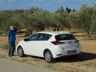 Unser Mietwagen, ein Toyota Auris Hybrid Automatik