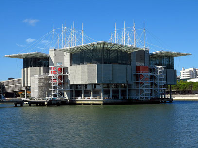 Oceanário de Lisboa, größtes Indoor-Aquarium Europas