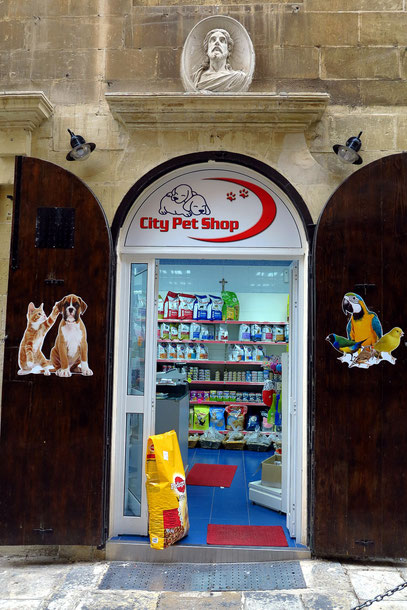 City Pet Shop in der OLd Theatre Street