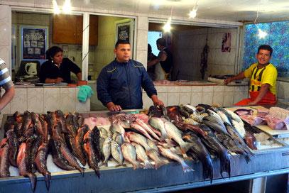Antofagasta, Fischereihafen und Fischmarkt