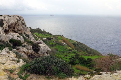 Blick vom Dingli Plateau auf das Mittelmeer
