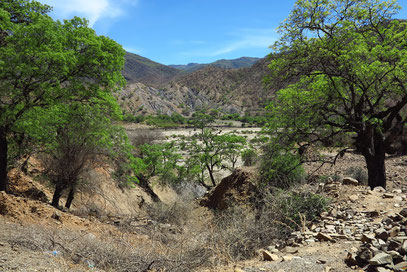 Flusstal mit wenig Wasser