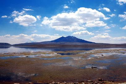 Lago Chungará und Vulkan K'isi K'isini