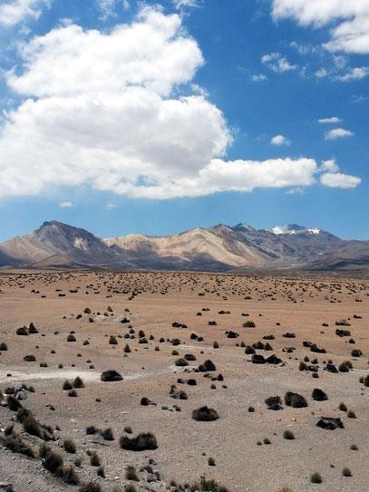 Altiplano von Bolivien