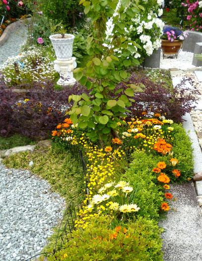 脇役の草花たちも、美しくバラを引き立てます。