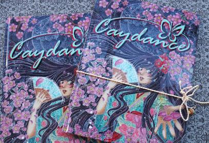 Artbook Caydance