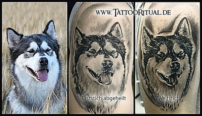 Portrait Hund TattooRitual dein TattooDoktor