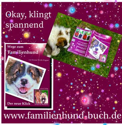 entspannter_Hund_Buch