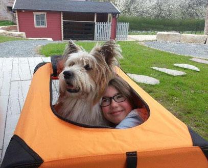 Kind und Hund Hundebuch für Kinder Erziehung