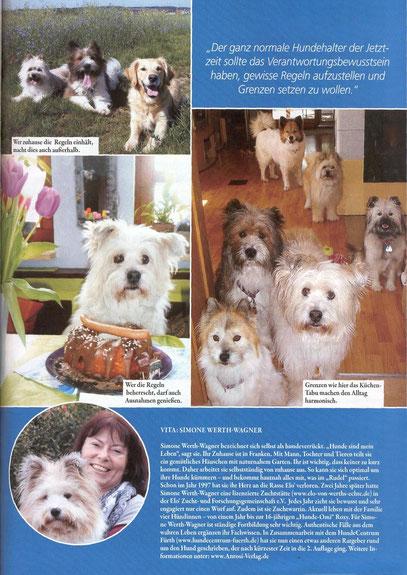 Welpe Familienhund Elo Junghund Erziehung Tipps