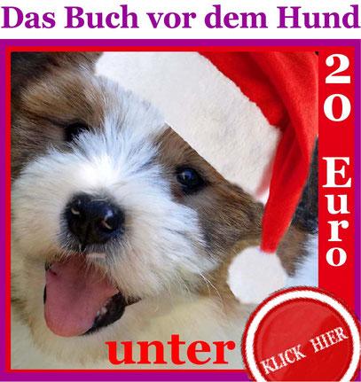 Geschenk Tipp Idee 20 Euro Welpe Hund Erziehung Familie Kind