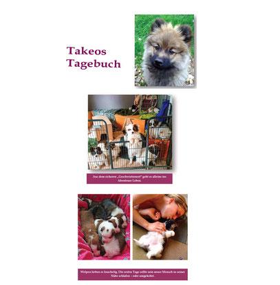 Familienhund Welpe Buch Rasse