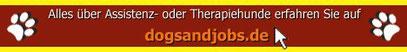 Servicehund Assistenzhund Rasse Diabetikerhund Therapiehund