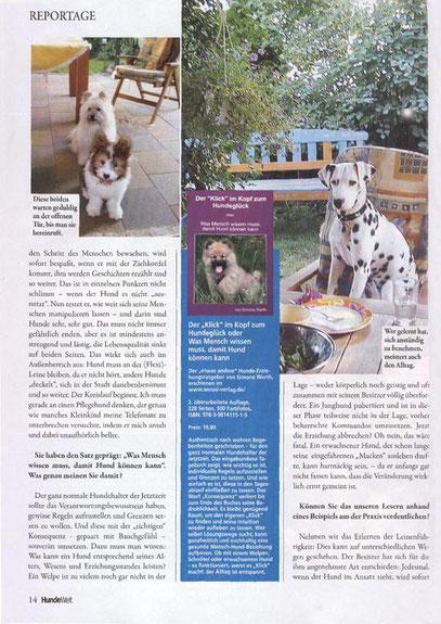 Hundeschule Welpe Junghund Lernen Familienhund